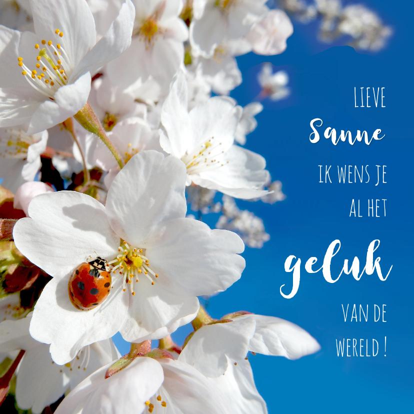 Zomaar kaarten - Coaching geluk lieveheerstbeest lente