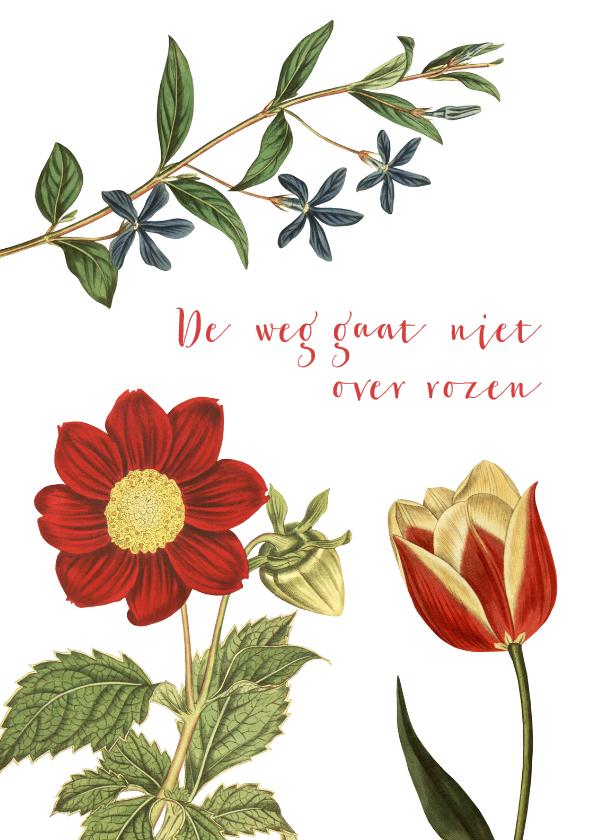 Zomaar kaarten - De weg gaat niet over rozen...