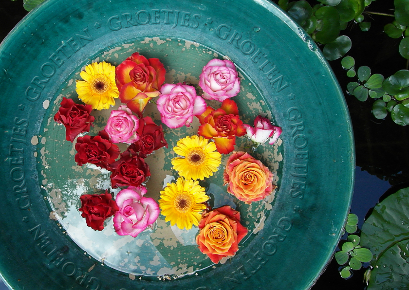 Zomaar kaarten - Groetjes bloemenschaal
