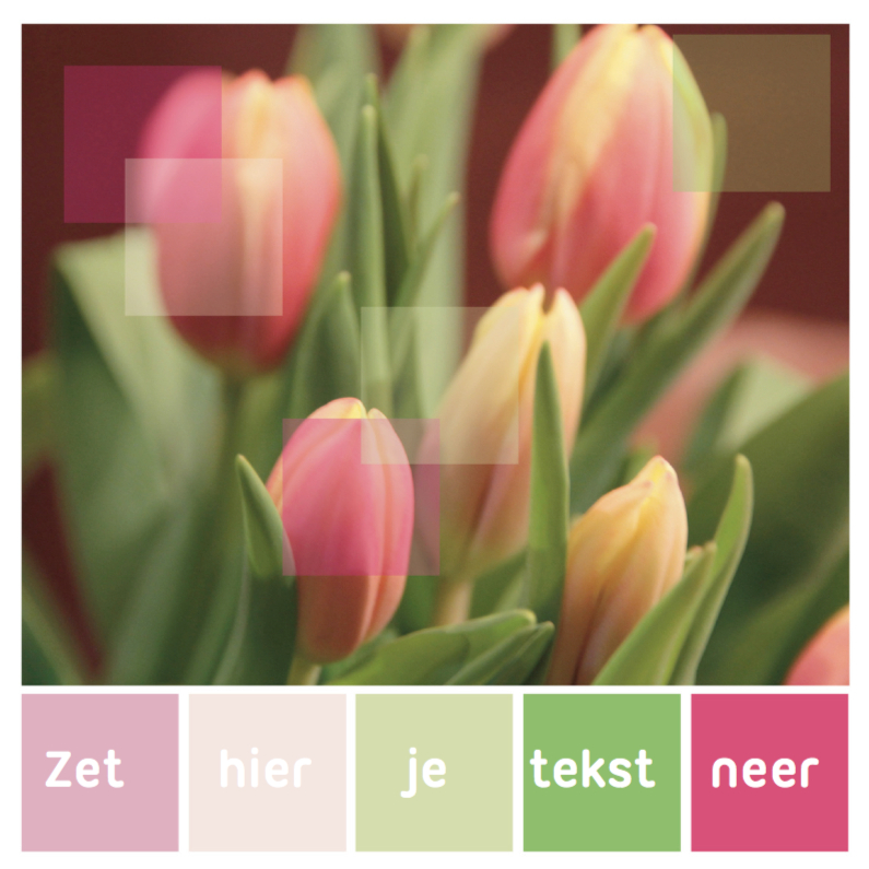 Zomaar kaarten - Kleurpalet kaart geelrose tulp