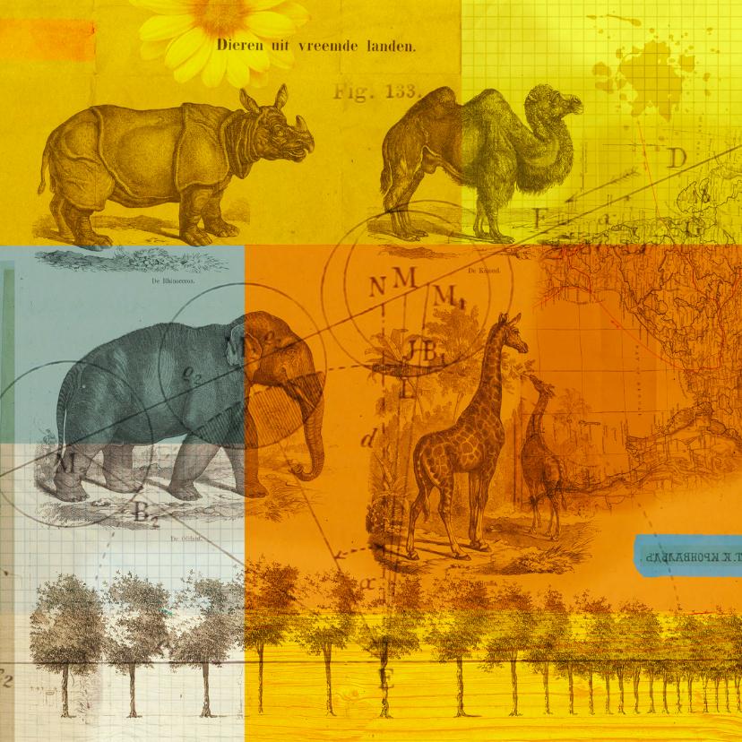 Zomaar kaarten - Kunstkaart wilde dieren-HR
