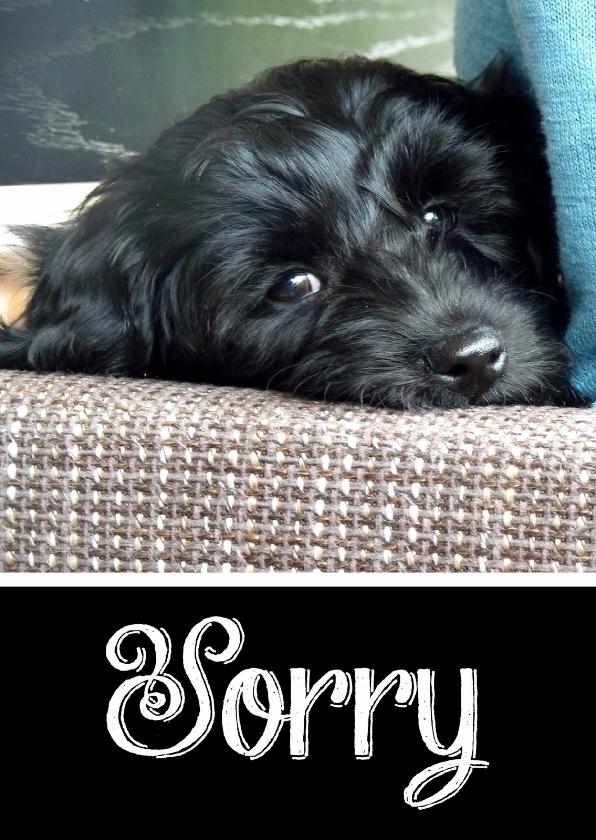 Zomaar kaarten - Sorry kaart hond