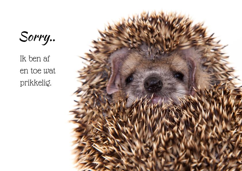 Zomaar kaarten - Sorry kaart - Lief prikkelig egeltje