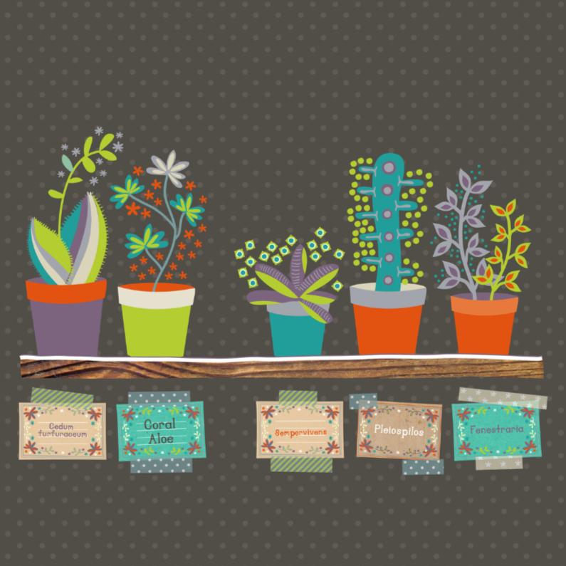 Zomaar kaarten - The succulent shop