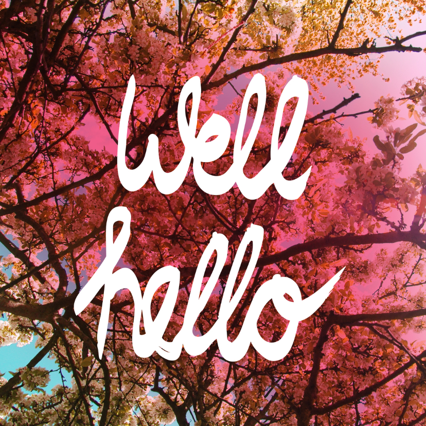 Zomaar kaarten - Well hello engels lente kaartje