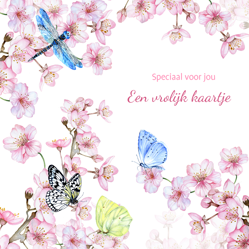 Zomaar kaarten - Zomaar bloesemtak vlinders