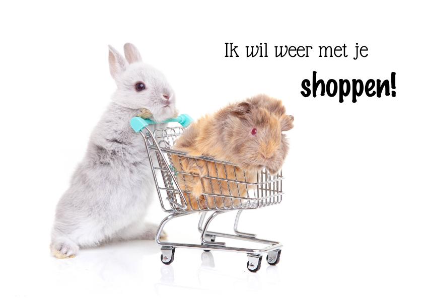 Zomaar kaarten - Zomaar kaart konijn en cavia in winkelwagen