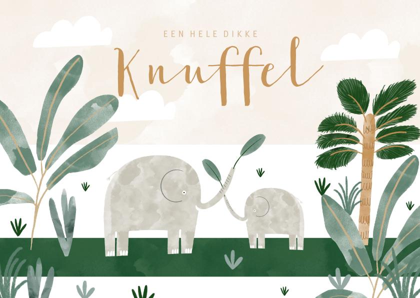 Zomaar kaarten - Zomaar kinderkaart olifantjes en dikke knuffel