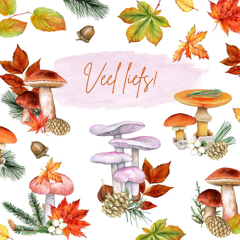 Zomaar kaarten - Zomaar paddestoelen herfst